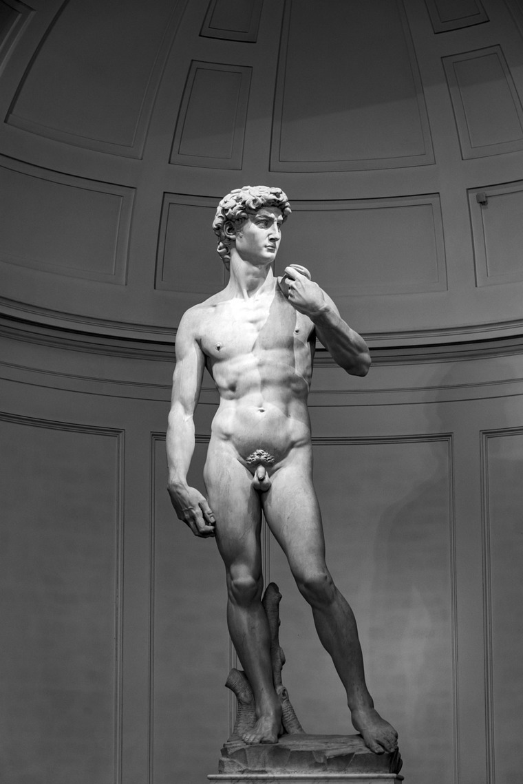 Escultura del David de Miguel Ángel en la Galería de la Academia de Florencia.