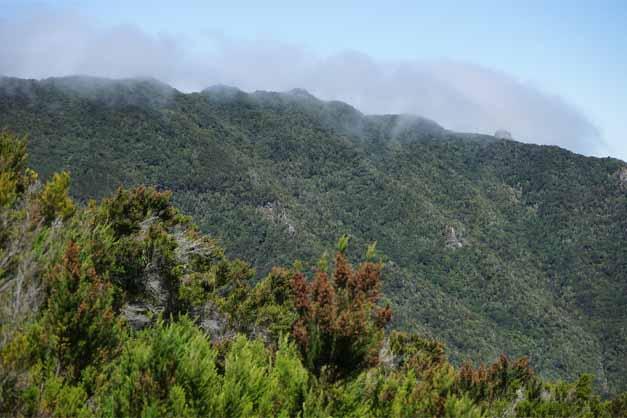 Vista del macizo de Anaga y sus senderos